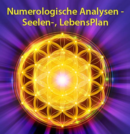 Numerologische Analysen - Seelen-, LebensPlan